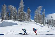 """В ближайшее время центр """"Тёя"""" сможет принять чемпионат России по лыжным гонкам"""
