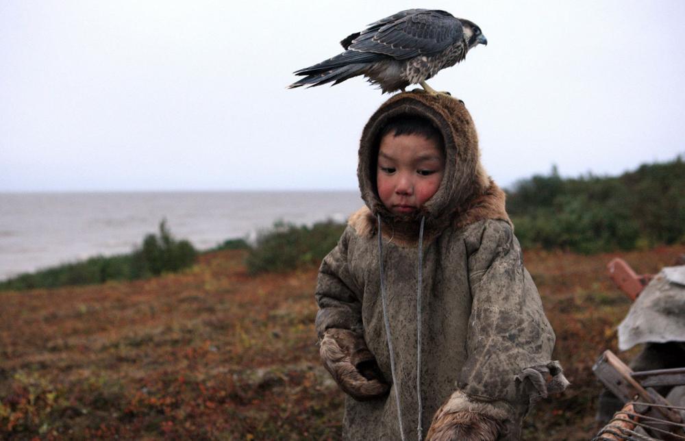 Little Warg, by Alexander Romanov (Tyumen). Photo: a boy and a falcon, Taz peninsula of Yamal-Nenets district