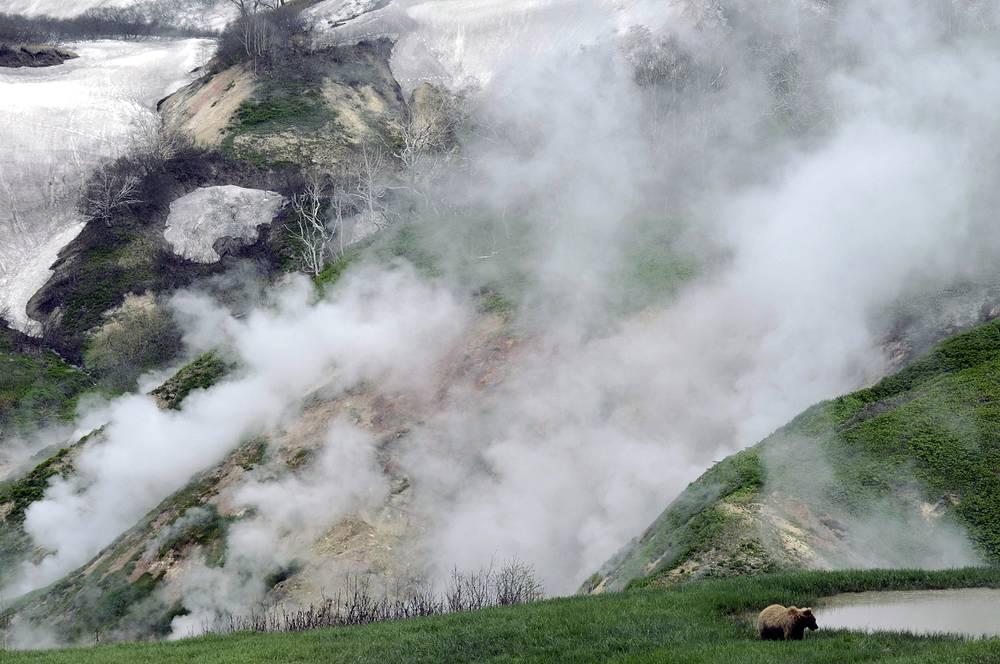 """Долина гейзеров является частью объекта Всемирного наследия ЮНЕСКО """"Вулканы Камчатки"""""""
