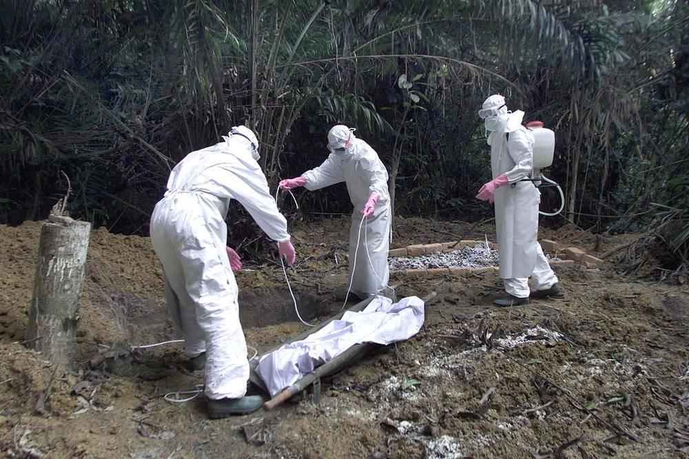 Вирус передается от человека к человеку при тесном контакте, через повреждения на кожном покрове или слизистую оболочку, с кровью, выделениями или другими жидкостями организма инфицированных людей. На фото: работа врачей с последствиями вируса Эбола в Габоне, 2001 год
