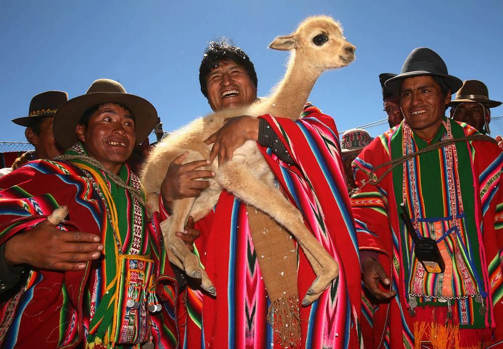 В детстве Эво Моралесу приходилось помогать отцу пасти лам и овец, а во время учебы в школе он подрабатывал пекарем и музыкантом. На фото: президент Боливии с детенышем викуньи в одной из деревень страны, 2007 год