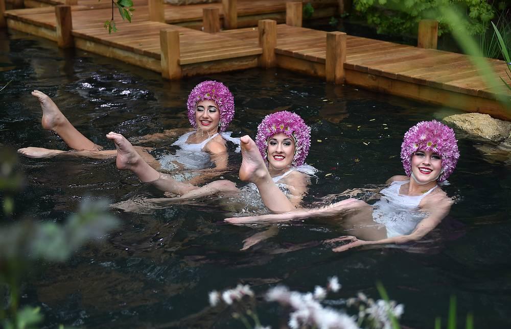 Синхронистки в павильоне M&G garden