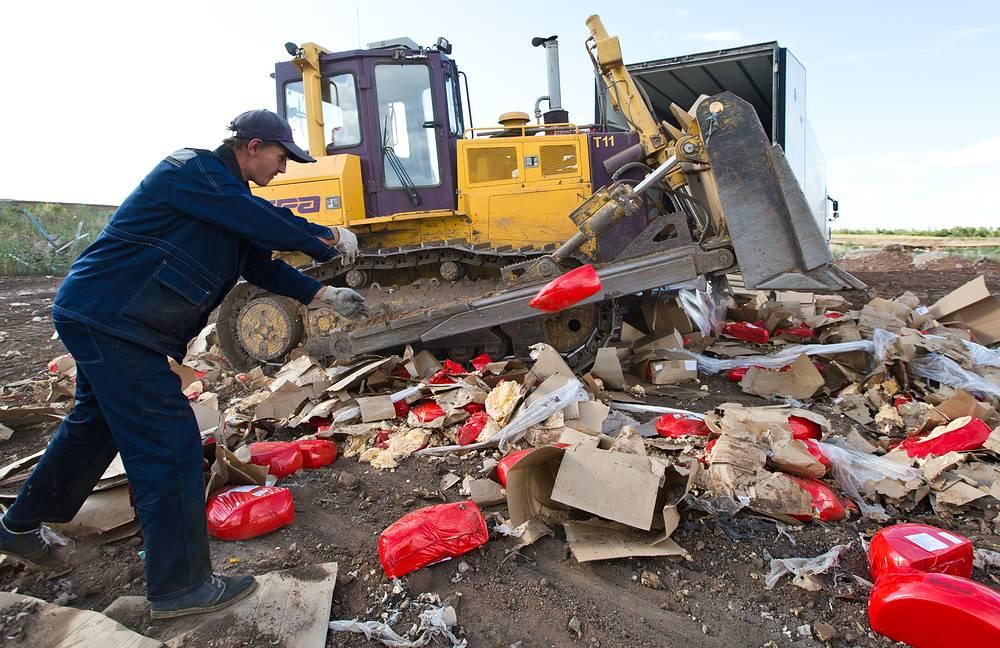 С 6 августа в России началось уничтожение санкционных продуктов, нелегального попавших на рынок РФ. Соответствующий указ подписал президент Владимир Путин 29 июля