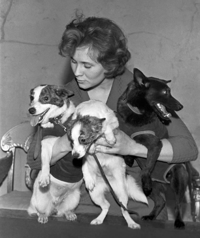 Собаки-космонавты Стрелка (слева), Чернушка (справа) и Дымка (в центре) – один из щенков Стрелки, родившийся после полета в космос, 1961 год