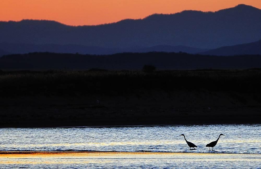 Одно из перспективных направлений туризма - экологическое. На фото: Дальневосточный морской биосферный заповедник