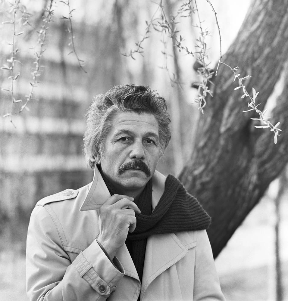Михай Волонтир, 1982 год