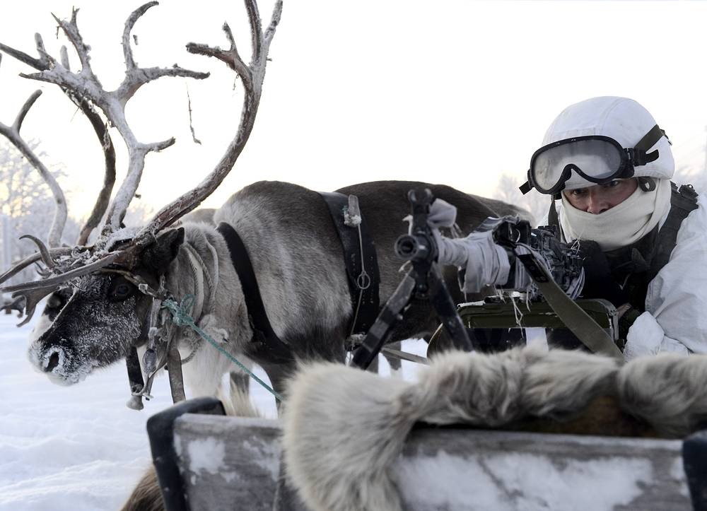 Учения 80-й отдельной арктической мотострелковой бригады Северного флота по управлению оленьими и собачьими упряжками. Мурманская область, 2016 год