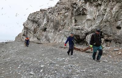 МЧС и экологи очистили на Сахалине от мусора остров Тюлений, где живут котики и сивучи