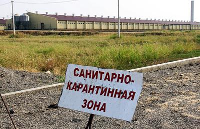 Власти Тюменской области готовы выделить более 40 млн руб. на возмещение ущерба от АЧС
