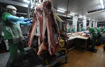 Отсчет срока для арбитража в споре ЕС и РФ по свинине начался 6 декабря