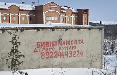 Власти Якутии планируют искоренить криминализацию в сфере добычи бивней мамонта