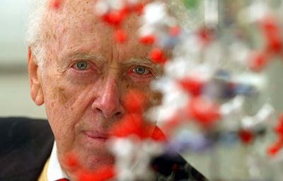 """""""Мы разгадали тайну жизни!"""": как была открыта двойная спираль ДНК"""