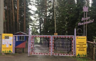 Сотрудники пищеблока лагеря на Урале, где отравились 65 человек, стали источником инфекции