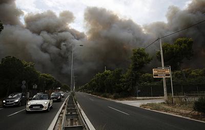 Крупнейшие лесные пожары в мире. Досье