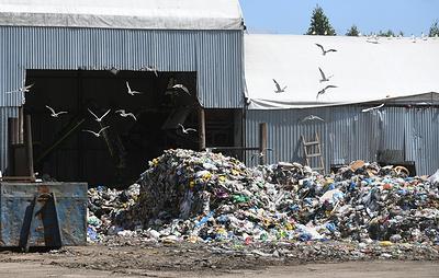 Подмосковный штаб по борьбе с незаконными свалками убрал 8 тыс. скоплений отходов за месяц