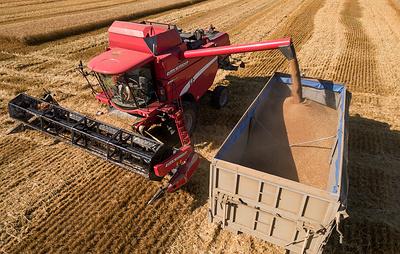 Цены на зерно в Челябинской области в 2018 году выросли примерно на треть