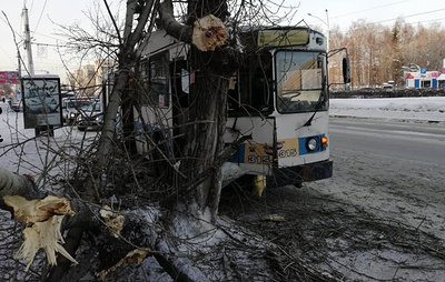В Барнауле троллейбус врезался в дерево