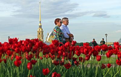 ВЦИОМ: почти половина россиян удовлетворена уровнем жизни