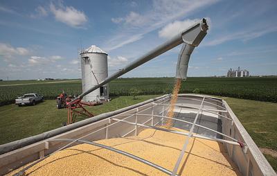 Bloomberg: власти Китая поручили компаниям прекратить закупки сельхозпродукции из США