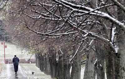 Первый снег выпал в регионах Центрального федерального округа