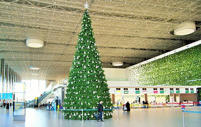 В аэропорту Симферополя установили самую большую в Крыму новогоднюю елку
