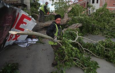 Шквалистый ветер в Екатеринбурге сломал деревья и уронил кран на стройплощадке