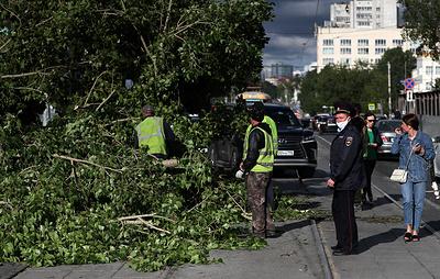 Количество погибших при урагане в Екатеринбурге увеличилось до трех