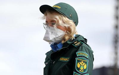 Глава Росприроднадзора: ответственность за вред экологии должна быть ужесточена