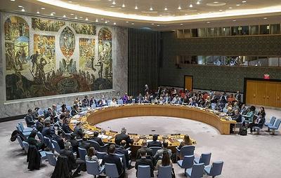 РФ и КНР наложили вето на проект резолюции СБ ООН по поставкам помощи Сирии через границу