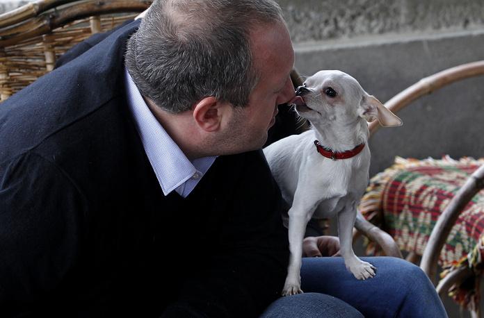 Georgia's President Georgy Margvelashvili and his daughter's dog Alfi at his home in Dusheti