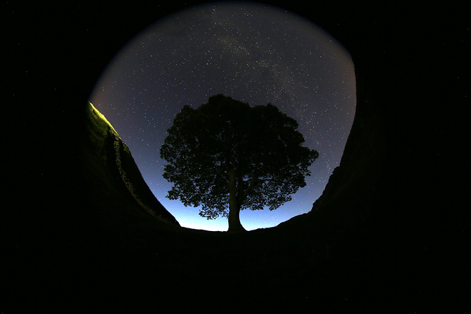 The annual Perseid meteor shower reaches its peak on the nights from 10 to 14 August. Photo: Sycamore Gap prior to the Perseid Meteor Shower above Hadrian's Wall near Bardon Mill, England, Aug. 12, 2015