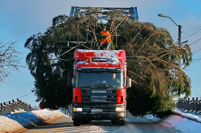 Transporting a Christmas tree to decorate a city ahead of winter holidays, Ivanovo region, December 12