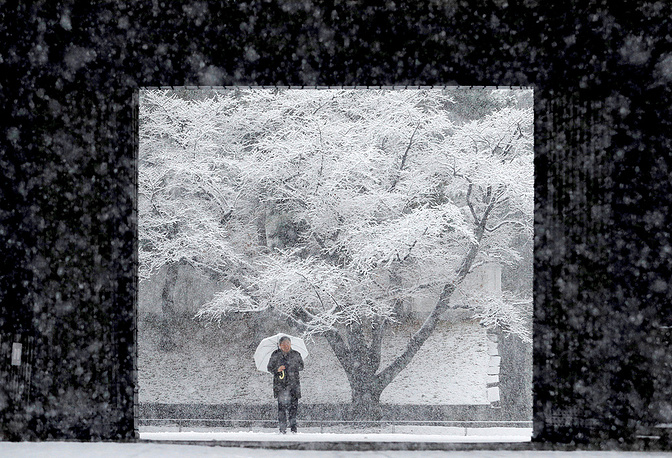 Snow fell in central Tokyo causing traffic congestion, train delays and flight cancellations