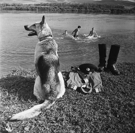 Border patrol agent's dog on duty guarding his master's belongings, 1973, 1973