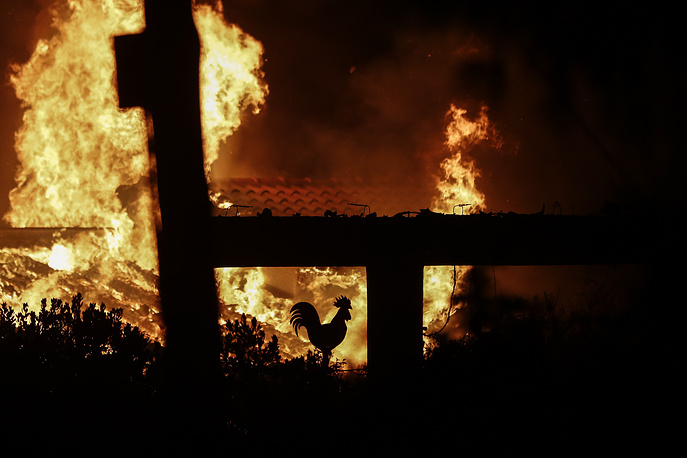 A rooster, decoration of a burned house is seen during a forest fire in Mati a northeast suburb of Athens