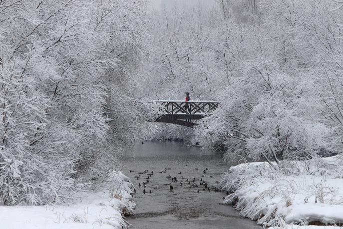 Babushkinsky Park after a snowfall