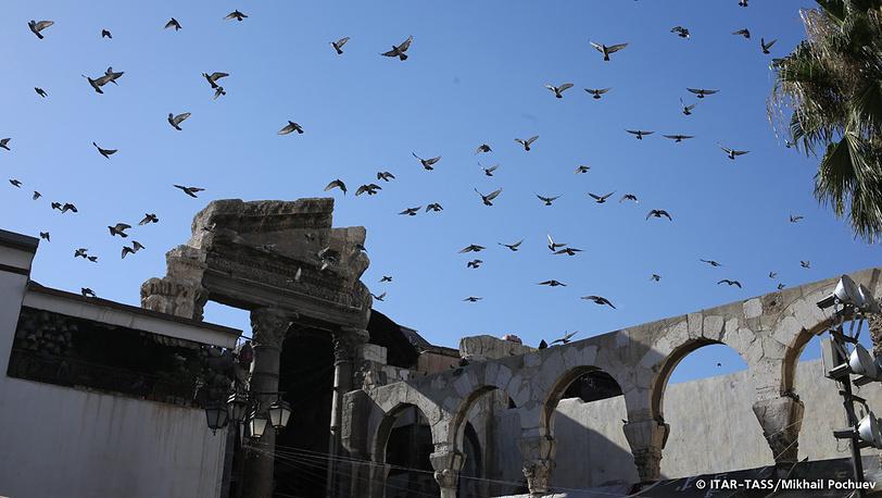 September 16. Pigeons above Al-Hamidiyah market.
