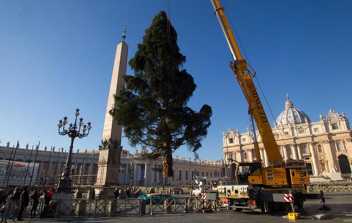 Рождественская ель в Ватикане