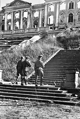 Немецкие офицеры у руин Большого дворца в Петергофе, 1943 год