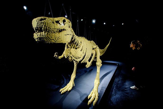 """""""Я всегда стараюсь найти баланс как с возрастной, так и тематической точки зрения. Например, скелет динозавра наверняка придется по нраву детям"""", - сообщил Савайя"""