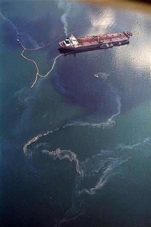 В результате аварии воды вдоль береговой линии оказались покрыты нефтью на протяжении более 320 км. В проливе Принца Вильгельма у южного побережья Аляски на несколько лет практически прекратилось промышленное рыболовство. Ущерб был нанесен и портовым поселениям южной Аляски, чья экономика зависима от рыболовства