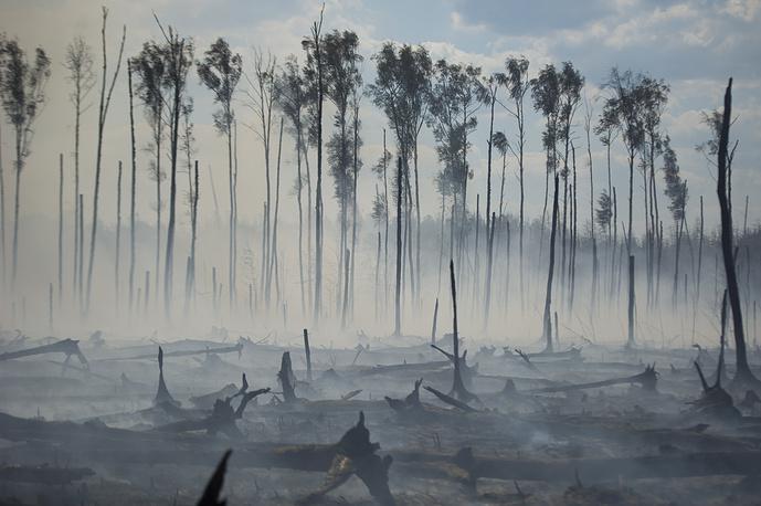 Дым горящих в Тверской области торфяников может снова накрыть северо-западные районы Подмосковья в ближайшие выходные дни