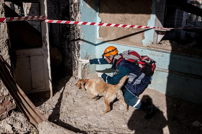 Во время состязаний кинологи и их питомцы выполняли разные задания, например, поиск людей в разрушенном здании