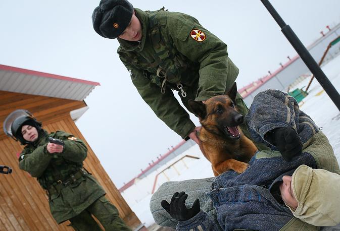 Помимо силового захвата собака оказывает сильное психологическое воздействие на преступника