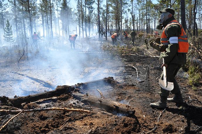По данным на 08:00 местного времени (03:00 мск) 15 мая, в регионе действуют 40 лесных пожаров