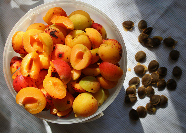 Венгрия поставляла в РФ абрикосы, персики и нектарины. Страна также известна плодоовощными консервами