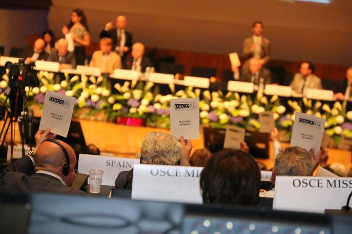 8 июля Парламентская ассамблея ОБСЕ одобрила антироссийскую резолюцию. Франция, Швейцария и Армения отказались голосовать, объяснив этот шаг отсутствием на встрече делегации России