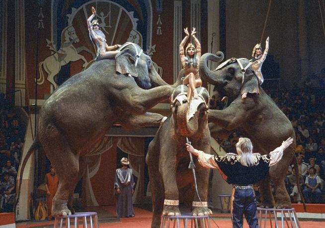 """Аттракцион """"На слонах вокруг света"""", 1993 год"""