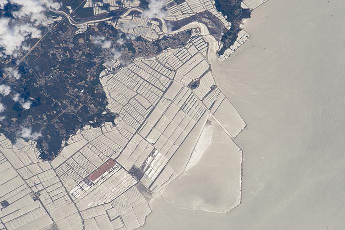 Бассейны рыбоводческого хозяйства на северо-востоке Китая
