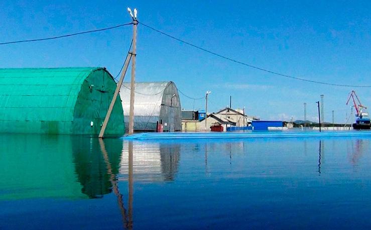 Наводнение в Еврейской автономной области. Фото: EPA/ИТАР-ТАСС